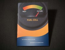 Fuel Cell Report