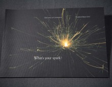 Spark Annual Report